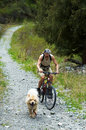 Mountain Biker And Dog On Old Road In Mountain Royalty Free Stock Photos - 4736308