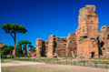 Baths Of Caracalla, Rome, Italy Royalty Free Stock Images - 47353239
