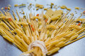 Like A Flower Growing Pasta Stock Images - 47404124