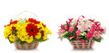 Beautiful Flowers In A Basket Isolated On White Stock Photography - 47414872