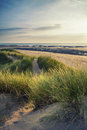 Summer Evening Landscape View Over Grassy Sand Dunes On Beach Wi Royalty Free Stock Photography - 47421417