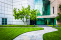Path To The Museum Of Art In Baltimore, Maryland. Royalty Free Stock Photography - 47445197