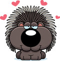 Cartoon Porcupine Love Stock Image - 47475691