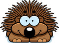 Smiling Little Porcupine Royalty Free Stock Photo - 47479605