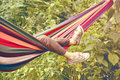 Child Lying In A Hammock Royalty Free Stock Photo - 47523685