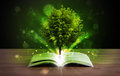 Open Book With Magical Green Tree And Rays Of Light Stock Image - 47537501