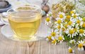 Cup Of Herbal Chamomile Tea. Royalty Free Stock Photos - 47539718