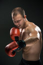 Young Boxer Boxing Royalty Free Stock Photo - 47547945