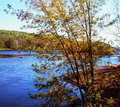 Autumn Highlights On The St. Croix River - Minnesota Royalty Free Stock Photos - 47555858