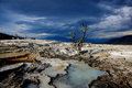 Mammoth Hot Springs Stock Images - 47608174