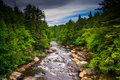View Of The Blackwater River From A Bridge At Blackwater Falls S Royalty Free Stock Images - 47632369
