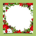 Christmas Card With Fir Branches, Holly, Poinsettia And Cones. Vector Eps-10. Stock Image - 47639541