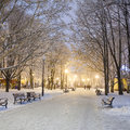 Footpath In A Winter City Park Stock Images - 47669854