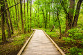 Boardwalk Trail Through The Forest At Wildwood Park Stock Photos - 47679923