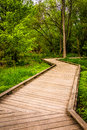 Boardwalk Trail Through The Forest At Wildwood Park Royalty Free Stock Image - 47679926