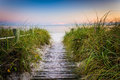 Grasses And Fence Along Path To Smathers Beach At Sunset, Key We Stock Images - 47686544