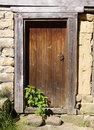 Old Wooden Door With Nettle Stock Photography - 47745762