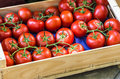Tomatoes Stock Photography - 47750602
