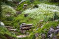 Stony Stairs In The Green Garden Stock Image - 47777451