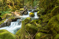 Small Stream Running Between Green Moss Covered Rocks Stock Images - 47787284