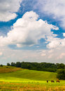 Beautiful Clouds Over Horses In A Farm Field In Southern York Co Royalty Free Stock Images - 47830499