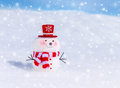 Cute Snowman Outdoors Royalty Free Stock Photo - 47877465