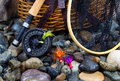 Fishing Items On Wet River Stones Royalty Free Stock Photography - 47906967