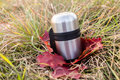 Vacuum Flask Royalty Free Stock Photos - 47925888