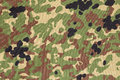 Japanese Armed Force Flecktarn Camouflage Royalty Free Stock Images - 47942119
