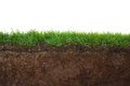 Grass And Soil Stock Image - 47973931