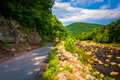 Road Along Red Creek, In The Rural Potomac Highlands Of West Vir Royalty Free Stock Images - 47976359