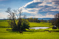 View Of A Pond On A Farm In Rural York County, Pennsylvania. Stock Images - 47978194