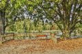HDR Photo Empty Bench In Stromovka Park In Autumn, Prague Stock Photos - 48027813