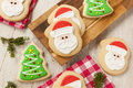 Homemade Christmas Sugar Cookies Stock Image - 48104371