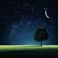 Starry Night. Royalty Free Stock Image - 48212496