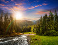 Mountain River In Pine Forest At Sunset Stock Image - 48237551
