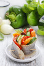Pickled Herring Rolls With Vegetables Royalty Free Stock Image - 48271556