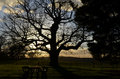 Setting Sun Over The English Landscape. Royalty Free Stock Photography - 48284777