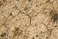 Dry Cracked Earth Stock Photo - 4859240
