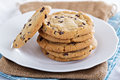 Chocolate Chip Cookies On A Plate Royalty Free Stock Photos - 48565298