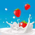 Vector Splash Of Milk With Strawberry- Illustration Stock Image - 48567261