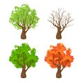 Tree At Four Seasons Royalty Free Stock Photo - 48617245