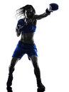 Woman Boxer Boxing Kickboxing Silhouette Isolated Stock Image - 48622821