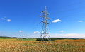 Mast Electrical Power Line In A Wheat Field Royalty Free Stock Photography - 48668467