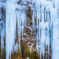 Frozen Waterfall Of Blue Icicles Royalty Free Stock Photo - 48671625