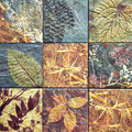 Old Wall Ceramic Tiles Patterns Handcraft From Thailand Public. Stock Image - 48691661