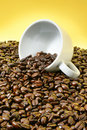 Tumbled Coffee Cup Over Roasted Beans Stock Image - 4871221