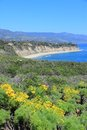 California Coast Royalty Free Stock Photo - 48706955
