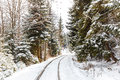 The Railway Between Bakuriani And Borjomi Royalty Free Stock Images - 48718709