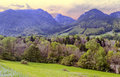 Trees In The French Alps Royalty Free Stock Images - 48728509